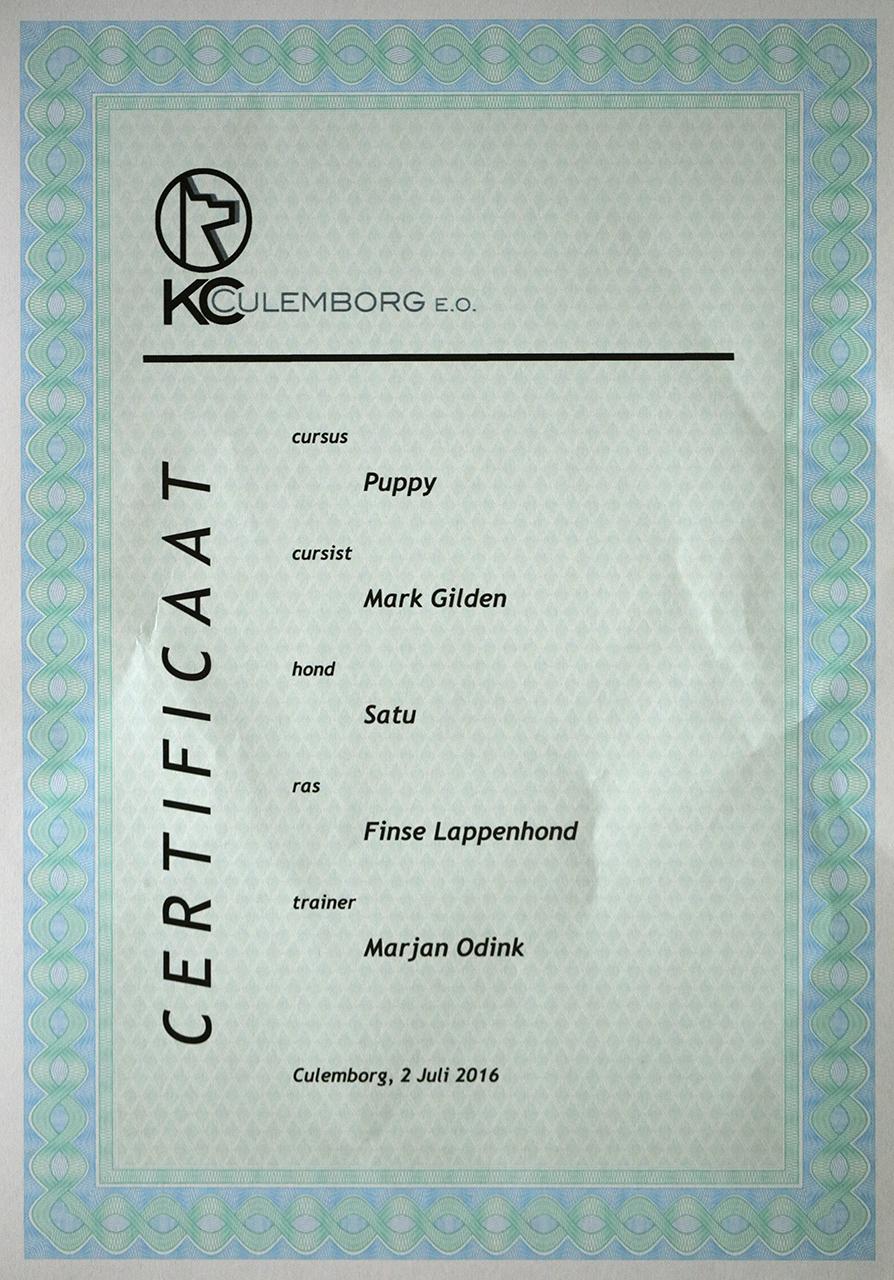 Eerste diploma Satu